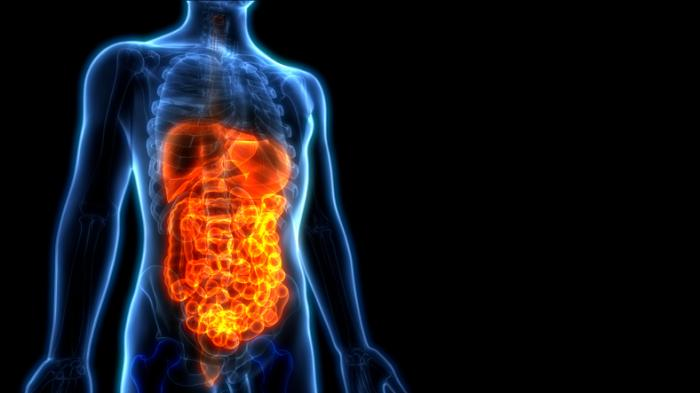Microbiome Startups Promise to Improve Your Gut Health, but Is the Science Solid?